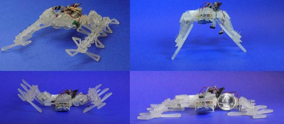 star-robot