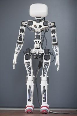 poppy-robot
